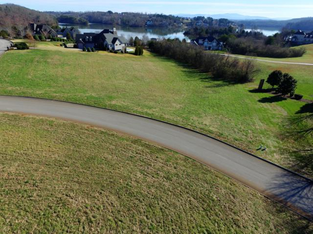 110 Bay Pointe Rd, Vonore, TN 37885 (#1040542) :: Realty Executives Associates Main Street