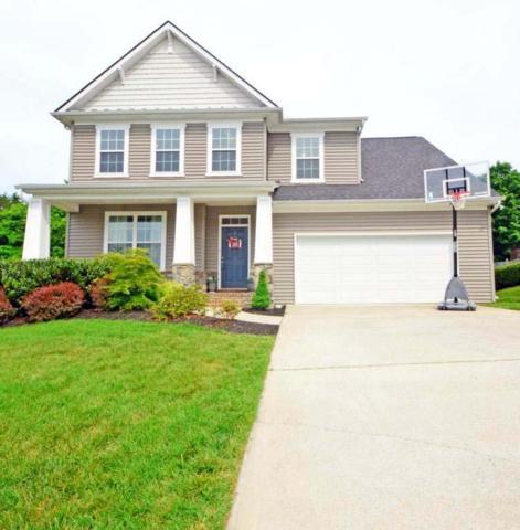 11213 Fox Brook Lane, Knoxville, TN 37932 (#1042069) :: Billy Houston Group