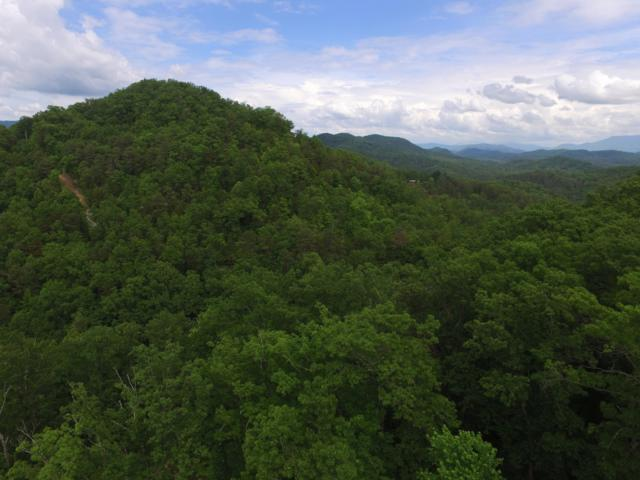 Parcel 038.03 Bear Mountain Way, Sevierville, TN 37876 (#1042129) :: Shannon Foster Boline Group
