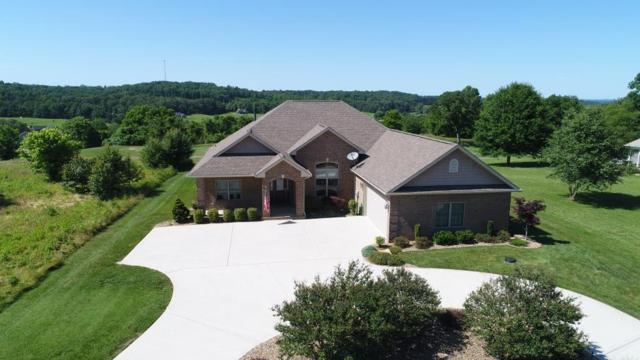 111 Walelu Tr, Vonore, TN 37885 (#1043947) :: Shannon Foster Boline Group