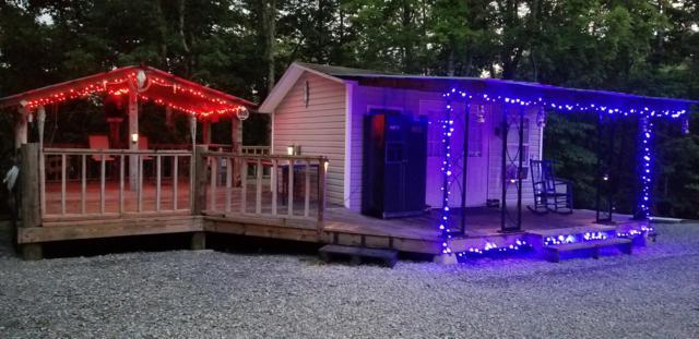 1563 Ponderosa Drive, Dandridge, TN 37725 (#1046835) :: Billy Houston Group