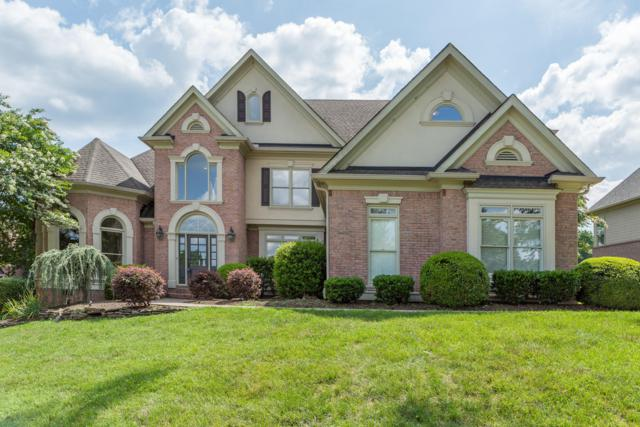 1009 Shadow Brook Drive, Knoxville, TN 37922 (#1046989) :: Billy Houston Group