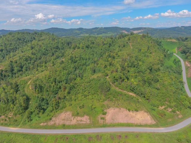 Marina Landing Rd #109, Tazewell, TN 37879 (#1047279) :: Billy Houston Group