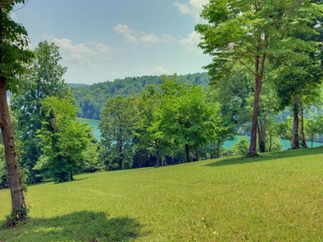 Deer Ridge Ln Lot 3 Lane, LaFollette, TN 37766 (#1048992) :: SMOKY's Real Estate LLC
