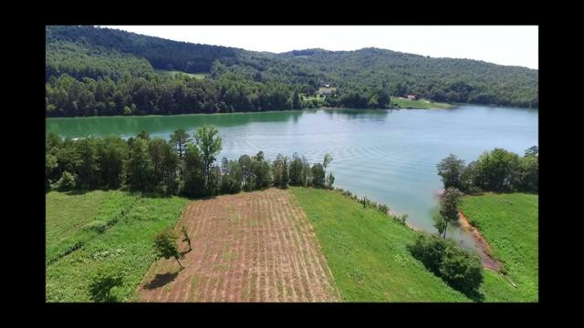 Old Leadmine Bend Rd, Sharps Chapel, TN 37866 (#1050298) :: Billy Houston Group