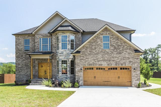 6014 Pembridge Rd, Knoxville, TN 37912 (#1050718) :: Billy Houston Group