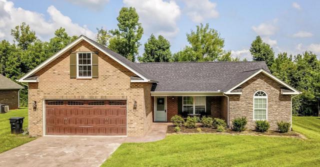 723 Peachtree Drive, Maryville, TN 37801 (#1051405) :: Billy Houston Group