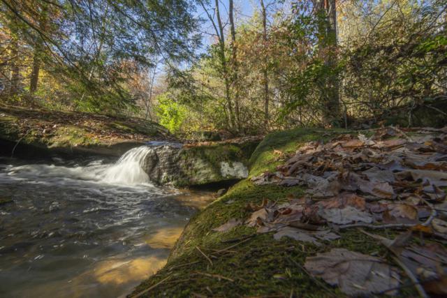 Twin Bridge Rd, Deer Lodge, TN 37726 (#1051632) :: Catrina Foster Group