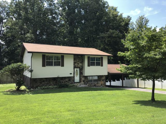 500 Norris Drive, Tazewell, TN 37879 (#1052206) :: Billy Houston Group