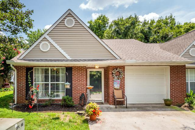 228 Dalton Place Way, Knoxville, TN 37912 (#1052597) :: Billy Houston Group