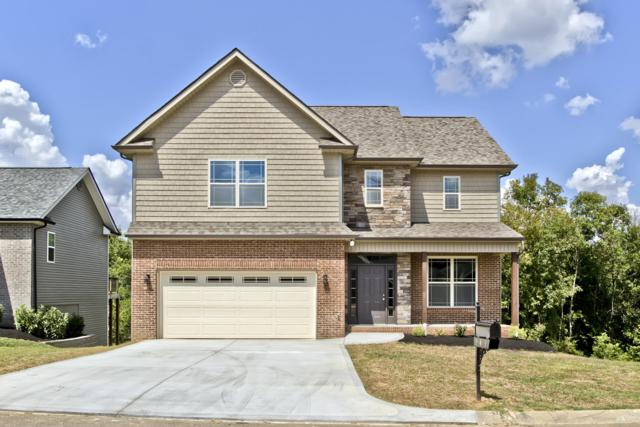 549 Greystoke Lane, Knoxville, TN 37912 (#1054057) :: Billy Houston Group