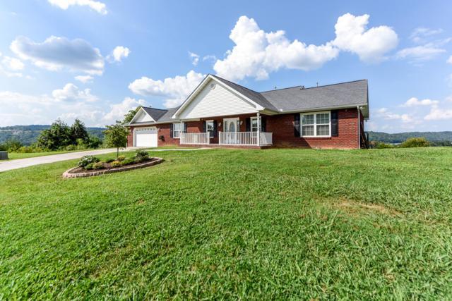 970 Harvest Drive, Seymour, TN 37865 (#1054090) :: Billy Houston Group