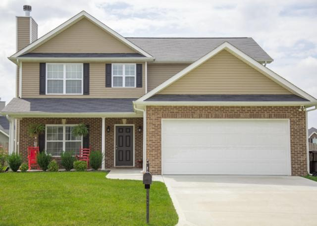 7310 Mint Clover Lane, Knoxville, TN 37931 (#1054678) :: Billy Houston Group