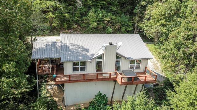 245 Cooper Hollow Rd, Townsend, TN 37882 (#1057760) :: Shannon Foster Boline Group