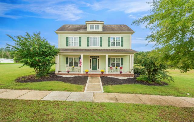131 Fallberry St, Oak Ridge, TN 37830 (#1057770) :: CENTURY 21 Legacy