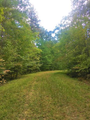 143 Cedarbrush Lane, Crossville, TN 38558 (#1058051) :: Billy Houston Group