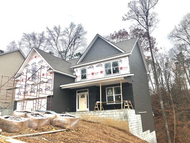 1241 Peake Lane, Knoxville, TN 37922 (#1058993) :: Billy Houston Group