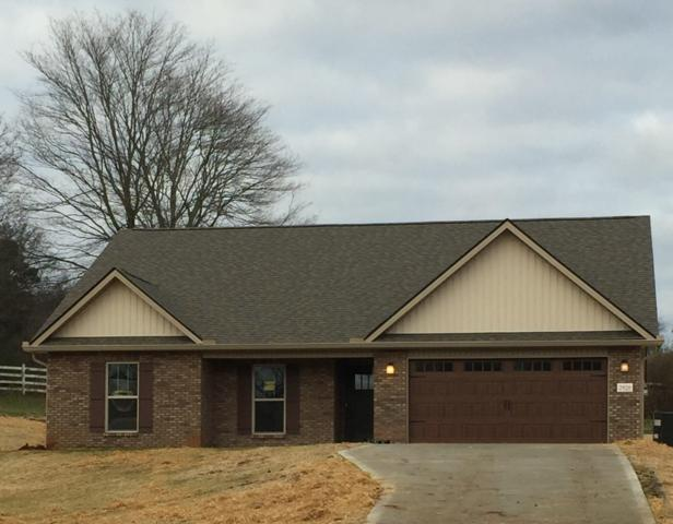 2920 Big Springs Rd, Friendsville, TN 37737 (#1061163) :: Billy Houston Group