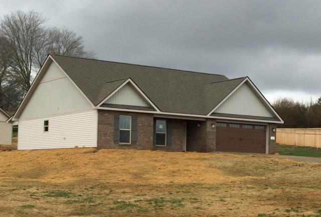 101 Montgomery Farms Drive, Friendsville, TN 37737 (#1061165) :: Billy Houston Group