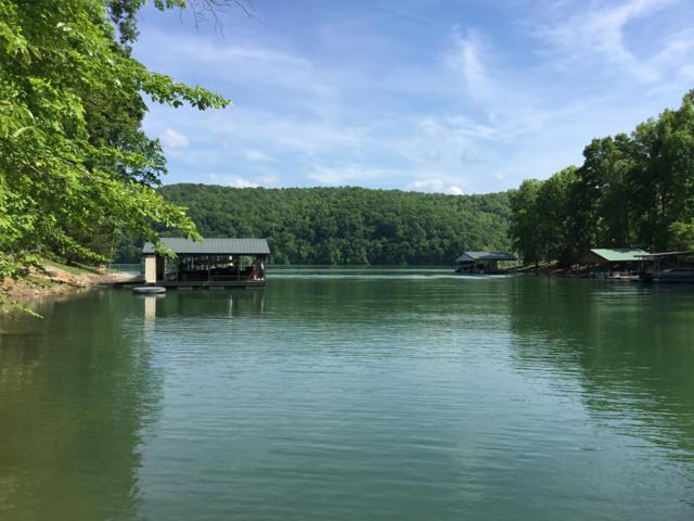 Little Fawn Point, LaFollette, TN 37766 (#1064432) :: Shannon Foster Boline Group