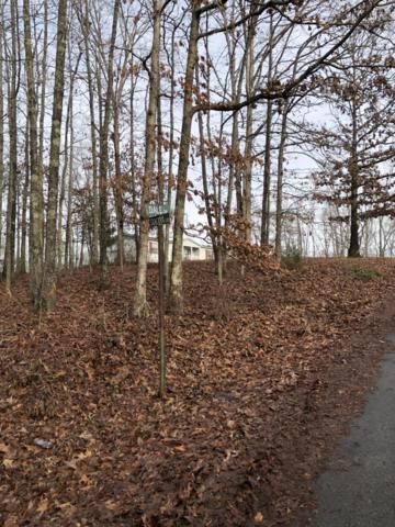 E Dale Drive, Rockwood, TN 37854 (#1064582) :: Realty Executives