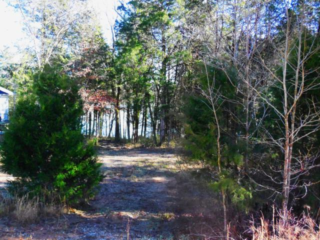 E Shore Lot 28 Drive, Rockwood, TN 37854 (#1065443) :: The Creel Group | Keller Williams Realty