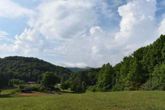 N 10th St, Middlesboro, KY 40965 (#1066722) :: Shannon Foster Boline Group