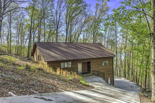 635 Sapphire Court, New Tazewell, TN 37825 (#1074678) :: Venture Real Estate Services, Inc.