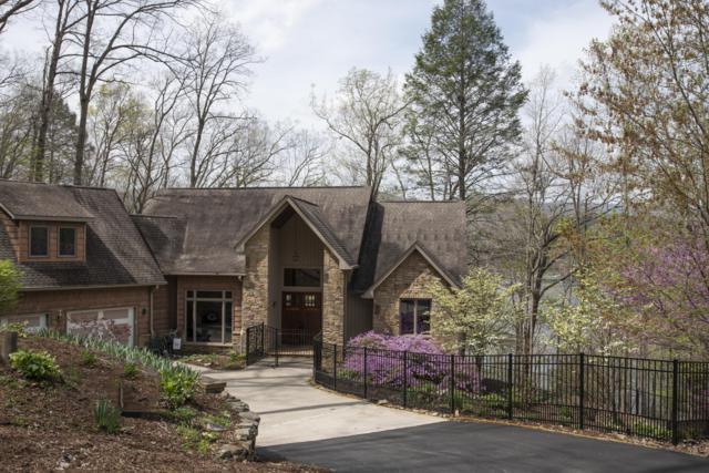 497 Foxridge Lane, Caryville, TN 37714 (#1074795) :: Venture Real Estate Services, Inc.