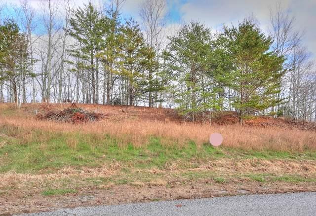Lot 402 Flint Ridge Rd, Rockwood, TN 37854 (#1082270) :: Realty Executives Associates Main Street