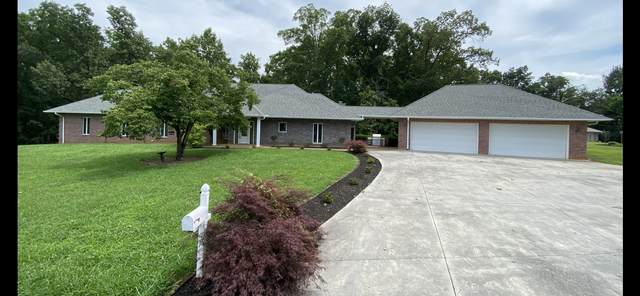 1317 Americana Drive, Pigeon Forge, TN 37863 (#1101204) :: Billy Houston Group