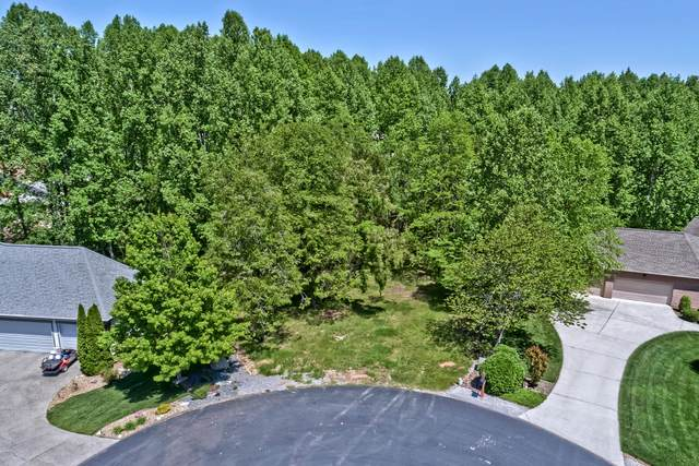 607 Tecumseh Trace, Loudon, TN 37774 (#1102000) :: The Sands Group