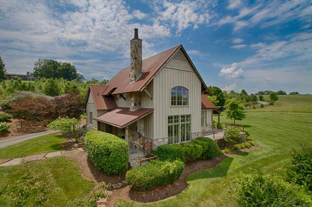 3647 Lowes Ferry Rd, Louisville, TN 37777 (#1105465) :: Realty Executives Associates