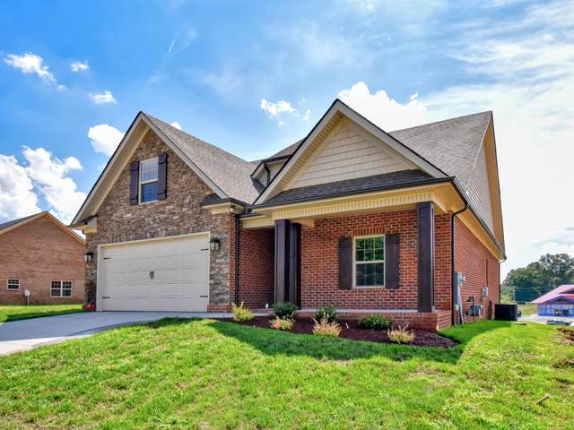 1613 Sugarfield Lane, Knoxville, TN 37932 (#1106223) :: Realty Executives