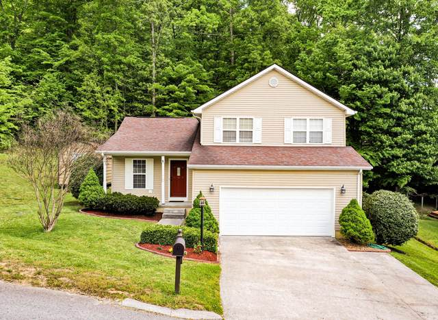 320 Picadilly Court, Middlesboro, KY 40965 (#1118918) :: Venture Real Estate Services, Inc.