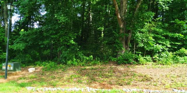 Cherokee Drive, Vonore, TN 37885 (#1119234) :: Realty Executives Associates