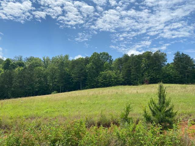 333 Enclave Way, Kingston, TN 37763 (#1119438) :: Shannon Foster Boline Group