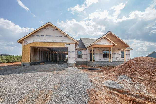 5928 Chester Lane, Maryville, TN 37801 (#1124717) :: Shannon Foster Boline Group