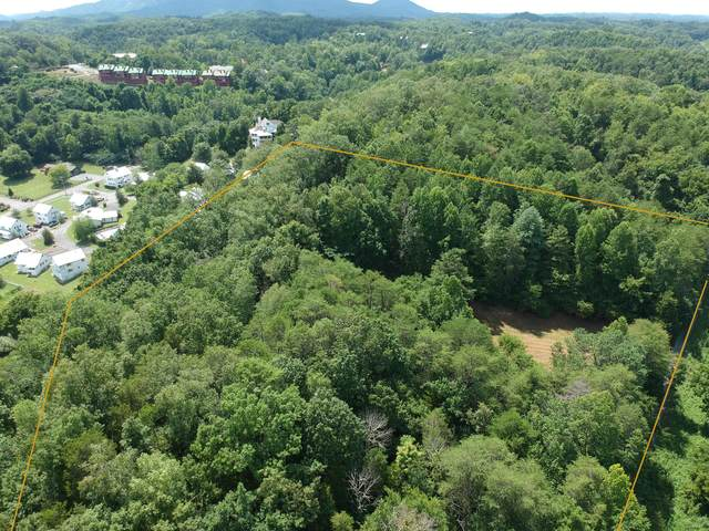 Valley Rd, Sevierville, TN 37862 (#1125119) :: Billy Houston Group