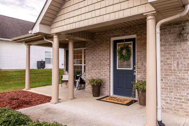 1222 Elsborn Ridge Rd, Maryville, TN 37801 (#1125647) :: Realty Executives Associates