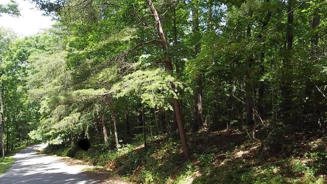 Hiwasse Drive, Jacksboro, TN 37757 (#1130535) :: Shannon Foster Boline Group