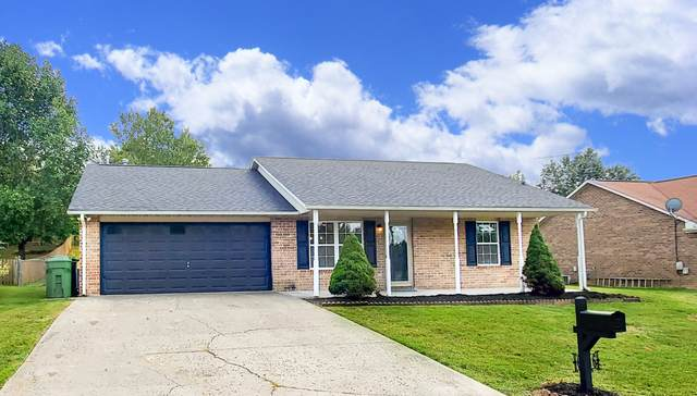 6906 Chloe Drive, Knoxville, TN 37918 (#1130557) :: Shannon Foster Boline Group