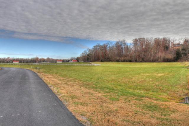Lot 495 W Shore Drive, Rockwood, TN 37854 (#1133902) :: Catrina Foster Group