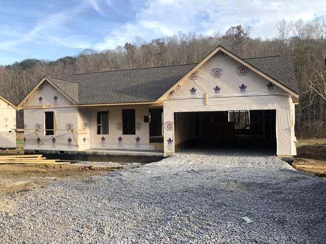 171 Old Maynardville Hwy, Maynardville, TN 37807 (#1135613) :: Realty Executives Associates