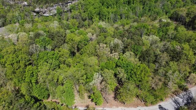 Lot 13 Eagle Bluff, Jamestown, TN 38556 (#1137970) :: Adam Wilson Realty