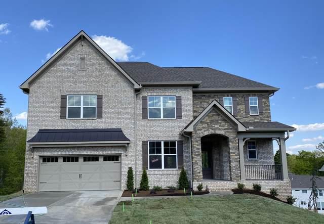 516 Vivian Lee Lane, Knoxville, TN 37934 (#1138067) :: Cindy Kraus Group | Realty Executives Associates