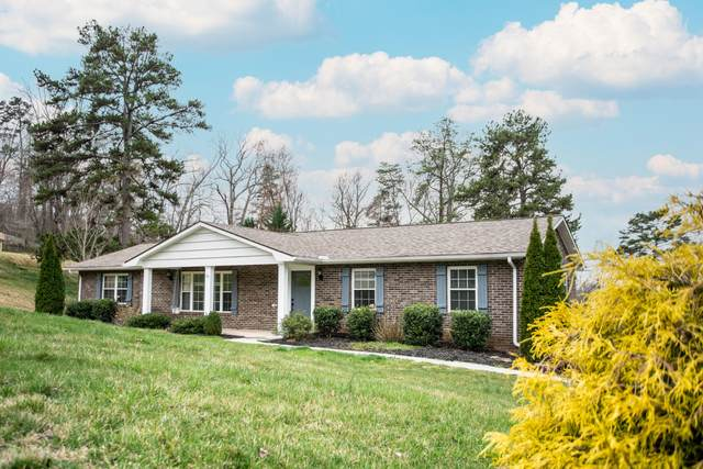 6717 Cochise Drive, Knoxville, TN 37918 (#1144575) :: A+ Team