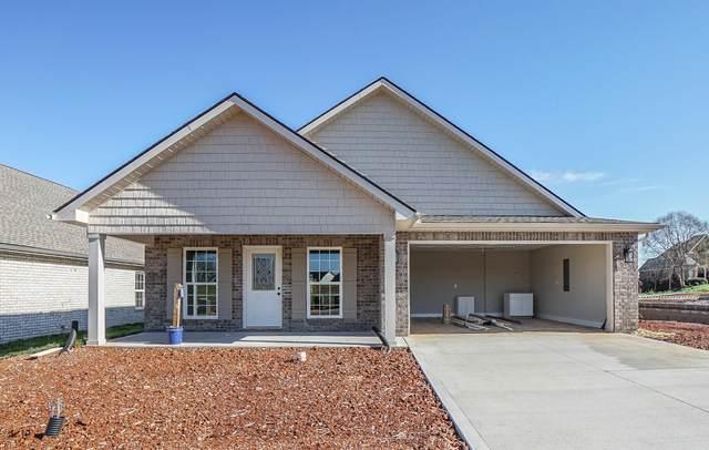 221 Sand Hills Drive, Maryville, TN 37801 (#1144744) :: Billy Houston Group
