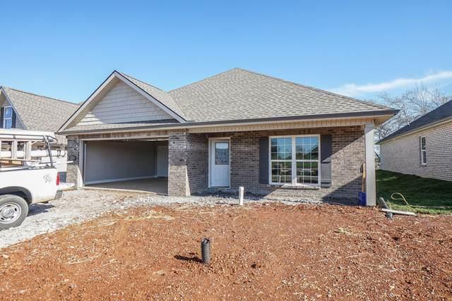 229 Sand Hills Drive, Maryville, TN 37801 (#1144755) :: Billy Houston Group