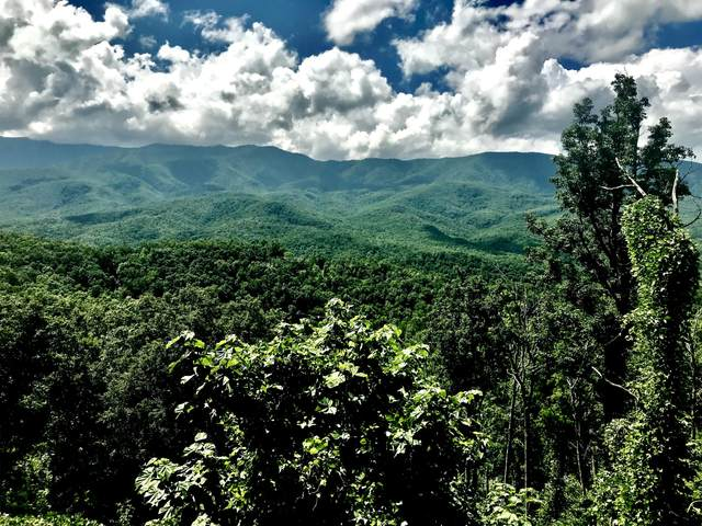 719 Picadilly Lane, Gatlinburg, TN 37738 (#1147188) :: Tennessee Elite Realty